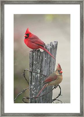 Framed Print featuring the photograph Pair Of Cards by Robert Camp