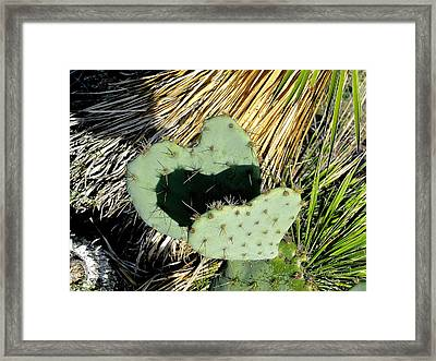 Pair Of Hearts Framed Print by Cindy Croal