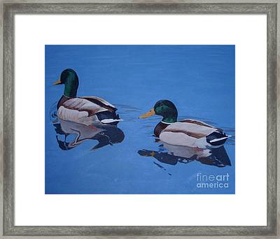 Pair Of Mallards Framed Print