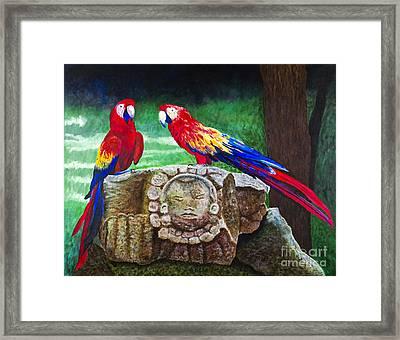 Pair Of Parrots By Barbara Heinrichs Framed Print by Sheldon Kralstein