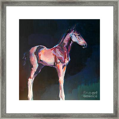 Paisano Framed Print by Kimberly Santini