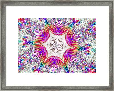 Paisley Love Kaleidoscope Framed Print
