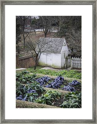 Palace Kitchen Winter Garden Framed Print