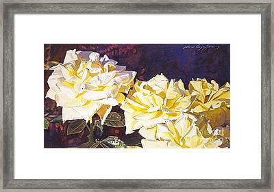 Palace Roses Framed Print by David Lloyd Glover