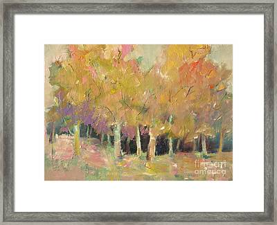 Pale Forest Framed Print by Michelle Abrams