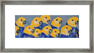 Framed Print featuring the painting Pale Head Parrots by Lyn Olsen