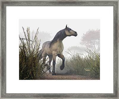Pale Horse In The Mist Framed Print by Daniel Eskridge