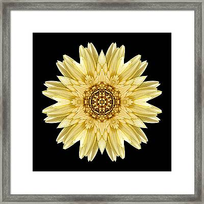 Framed Print featuring the photograph Pale Yellow Gerbera Daisy I Flower Mandala by David J Bookbinder
