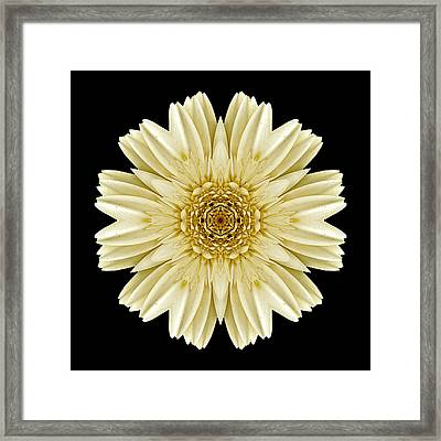 Framed Print featuring the photograph Pale Yellow Gerbera Daisy IIi Flower Mandala by David J Bookbinder