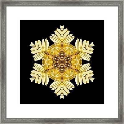 Pale Yellow Gerbera Daisy Vii Flower Mandalaflower Mandala Framed Print