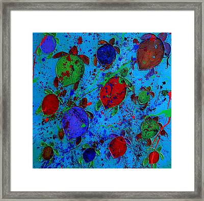 Palette Of Turtles Framed Print by Patti Schermerhorn