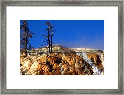 Palette Spring Steam Framed Print by Brian Harig