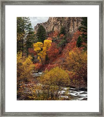 Palisades Creek Canyon Framed Print