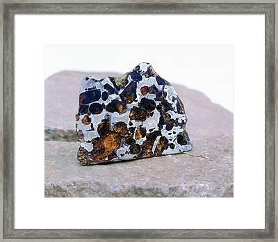 Pallasite Meteorite Fragment Framed Print by Detlev Van Ravenswaay