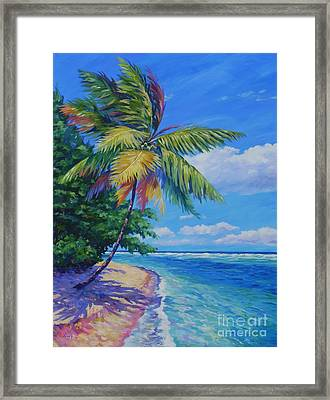 Palm At The Water's Edge Framed Print by John Clark