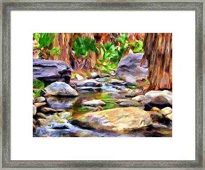 Palm Canyon Trail Framed Print by Michael Pickett