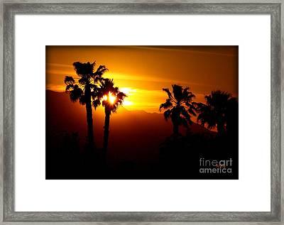 Palm Desert Sunset Framed Print by Patrick Witz