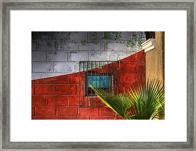 Palm Frond View Framed Print by Kandy Hurley