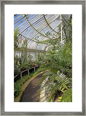 Palm House Belfast Ireland Framed Print by Betsy Knapp
