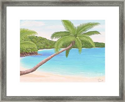Palm In Paradise Framed Print