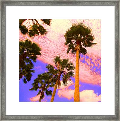 Palm In The Clouds Framed Print by Ann Johndro-Collins
