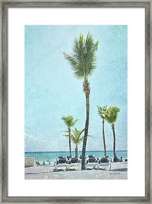 Palm Iv Framed Print by Ramona Murdock