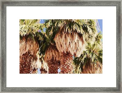Palm Framed Print