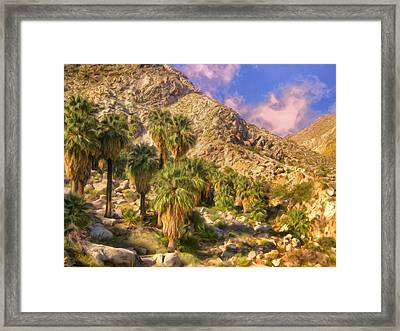 Palm Oasis In Late Afternoon Framed Print