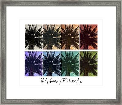 Palm Shades Framed Print