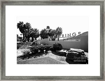 Palm Spring  Framed Print by Art K