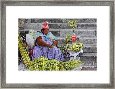 Palm Sunday Preparations Framed Print by James Brunker