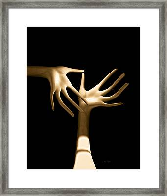 Palm Tickle Framed Print by Bob Orsillo