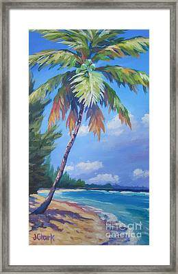 Palm Tree And View East    Framed Print by John Clark