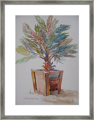 Palm Tree Framed Print by John  Svenson