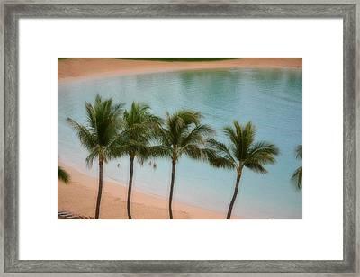 Palm Tree Lagoon Framed Print