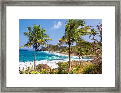 Palm Trees And Blue Sea Framed Print by Jess Kraft