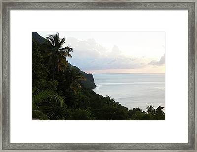 Palm Trees And Cliffs With Ocean Framed Print