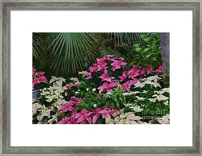 Palms And Flowers Framed Print
