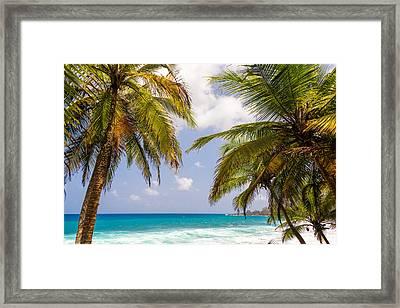 Palm Trees And Seascape Framed Print by Jess Kraft