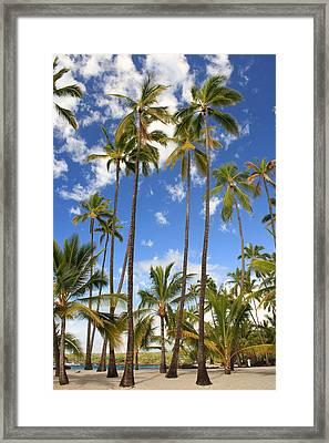 Framed Print featuring the photograph Palm Trees At Pu'uhonua O Honaunau Nhp by Scott Rackers