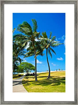 Palm Trees In The Park Framed Print by Matt Radcliffe