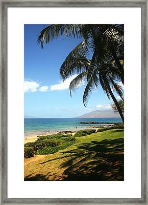 Palm Trees On A Maui Beach Framed Print