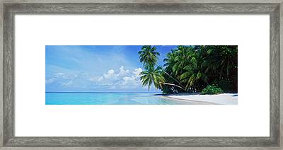 Palm Trees On The Beach, Fihalhohi Framed Print by Panoramic Images