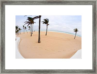 Palm Trees On The Beach, Fort Framed Print