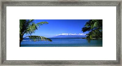 Palm Trees On The Beach, Kapalua Beach Framed Print by Panoramic Images