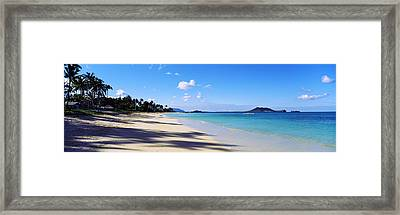 Palm Trees On The Beach, Lanikai Beach Framed Print by Panoramic Images