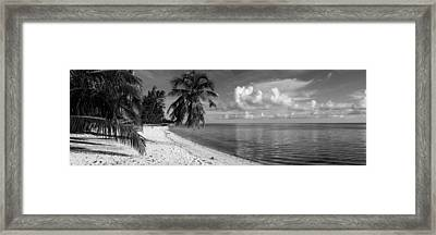 Palm Trees On The Beach, Matira Beach Framed Print