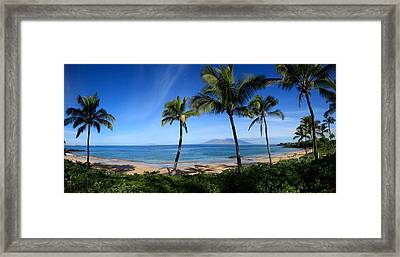 Palm Trees On The Beach, Maui, Hawaii Framed Print by Panoramic Images