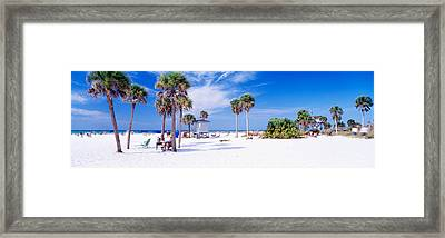 Palm Trees On The Beach, Siesta Key Framed Print