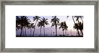 Palm Trees On The Beach, Waikiki Framed Print by Panoramic Images